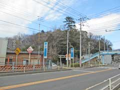 狭山神社鎮座の御林山