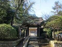 豊顕寺山門