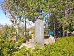 横根稲荷神社馬頭観音碑