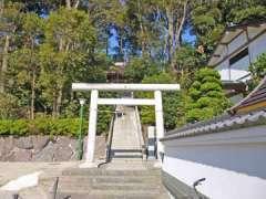 新宿須賀神社